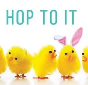 Hop-to-It-Topanga
